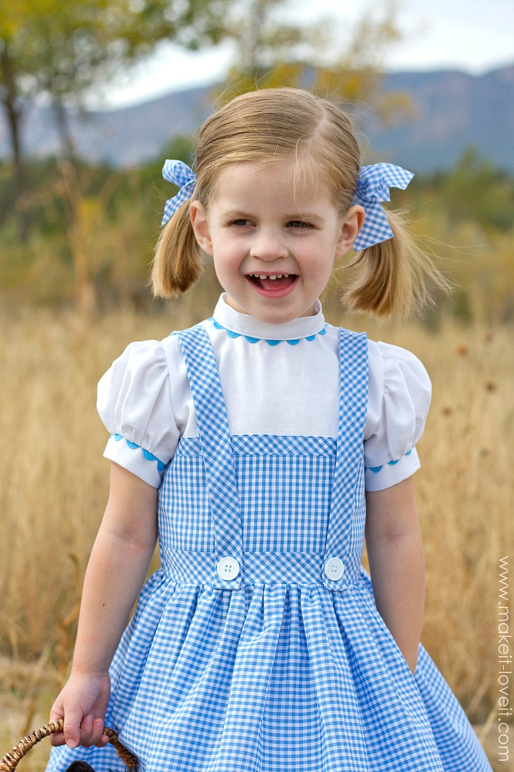 diy dorothy costume from wizard of oz via make it and love it