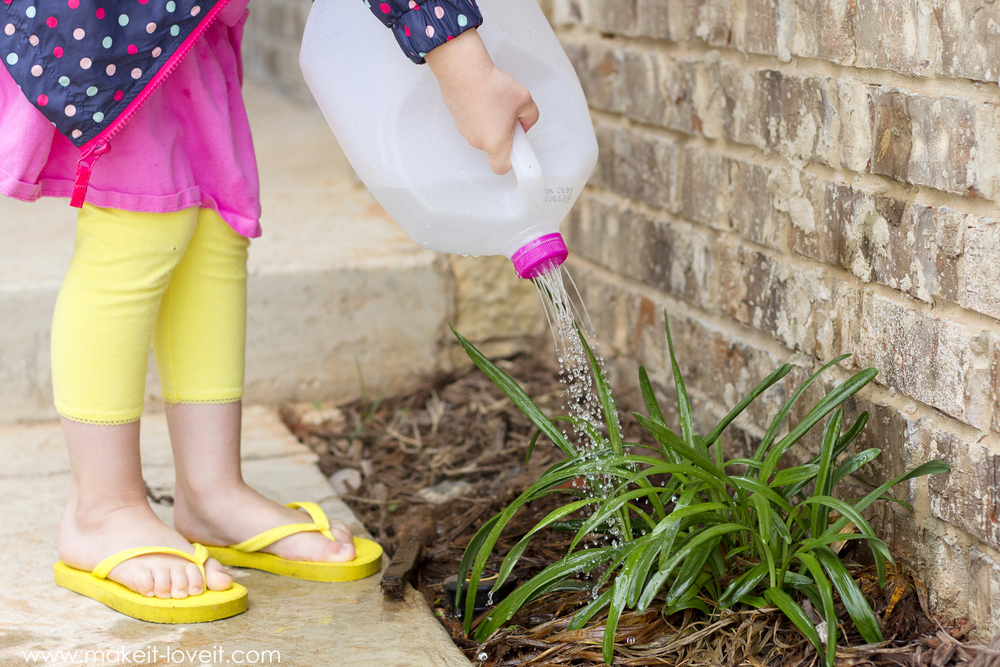 Make a Watering Can from an old Milk Jug...perfect for kids! VIDEO included.   via Make It and Love It