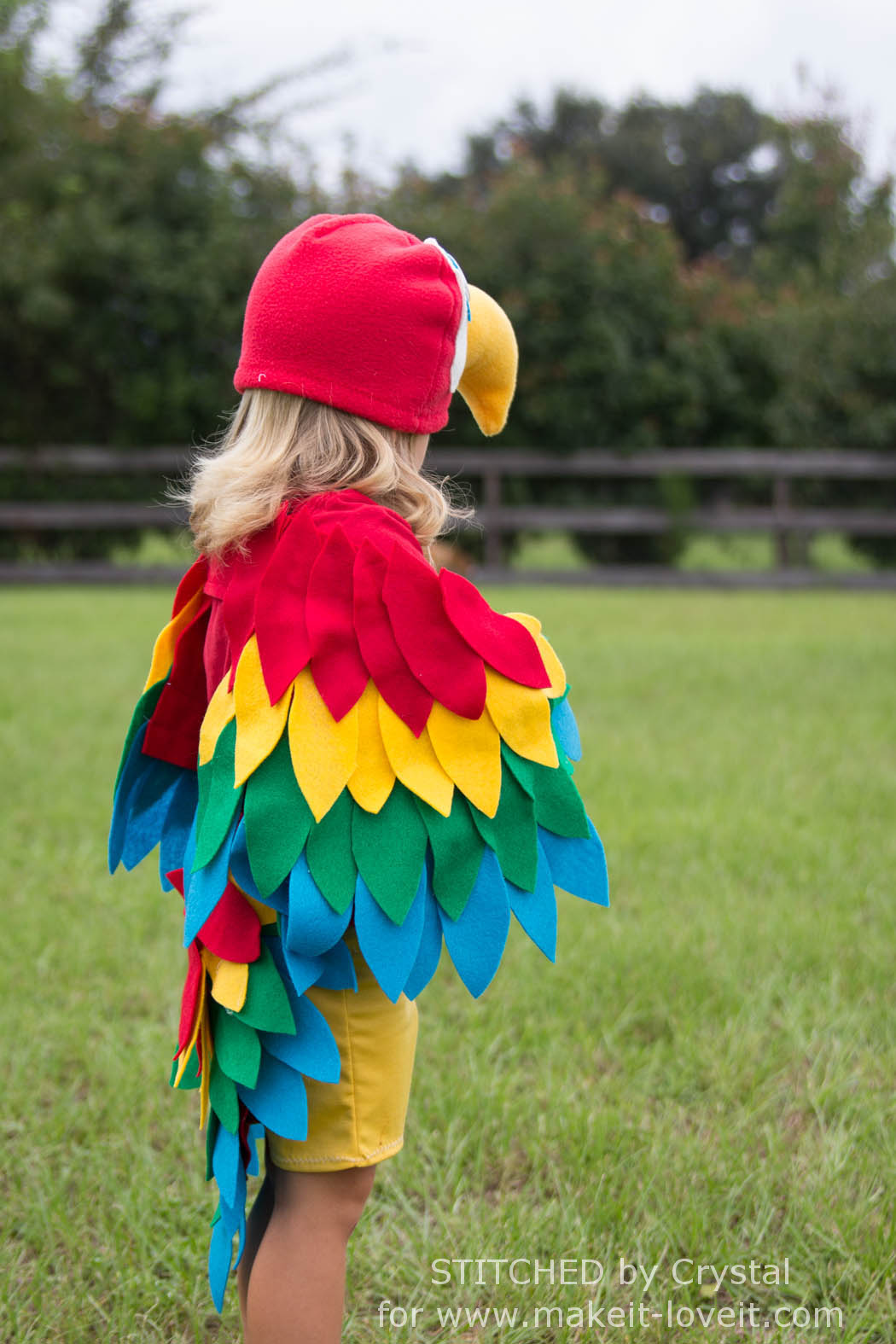 Sew an Easy Parrot Cos...