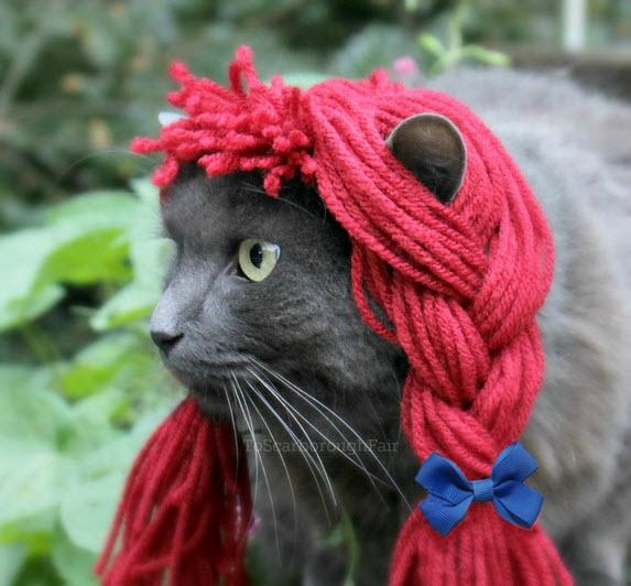 DIY-Raggedy-Anne-Pet-Costume