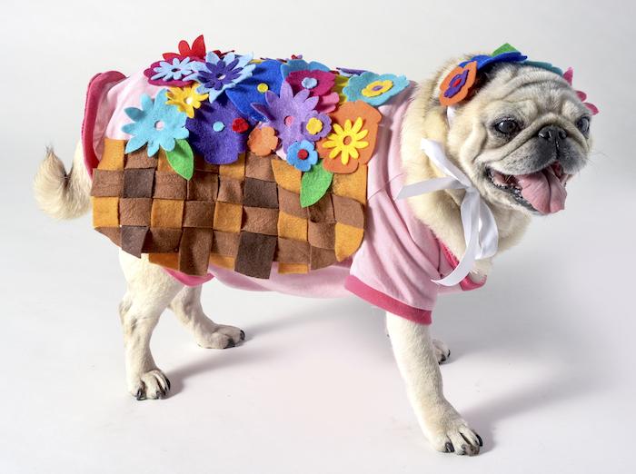 Flower-Basket-Costume-01
