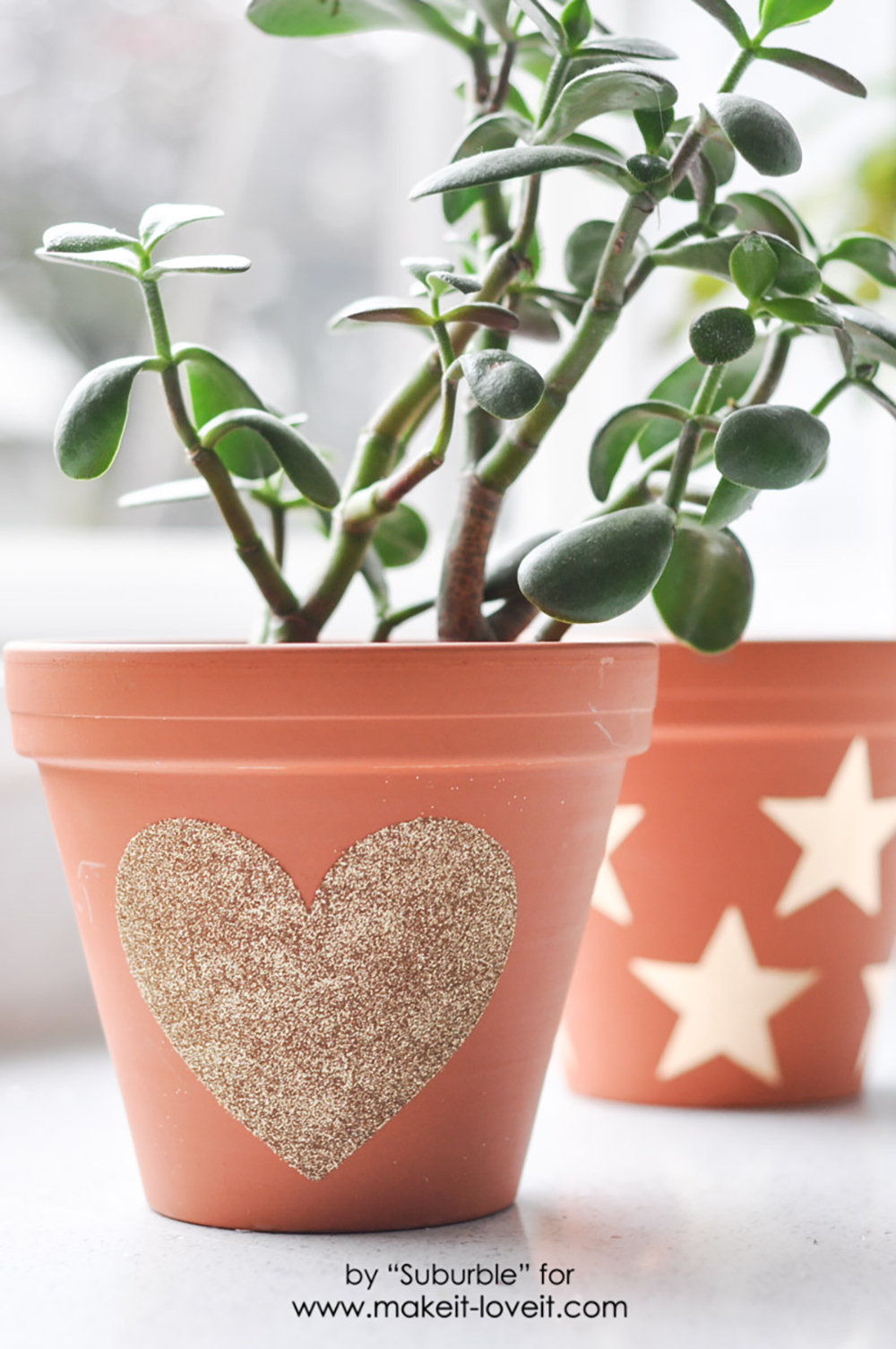 Getting Glitzy With Flower Pots   Dress Up Your Pots With Glitter! | Via  Make