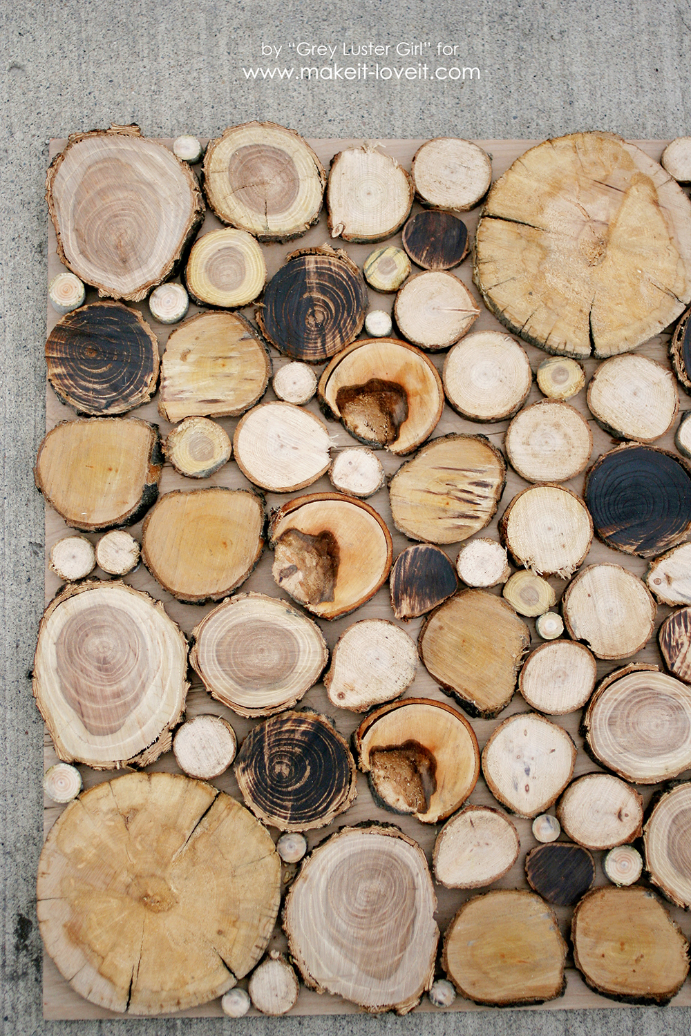 Make Your Own Wood Slice Backdrop (12)