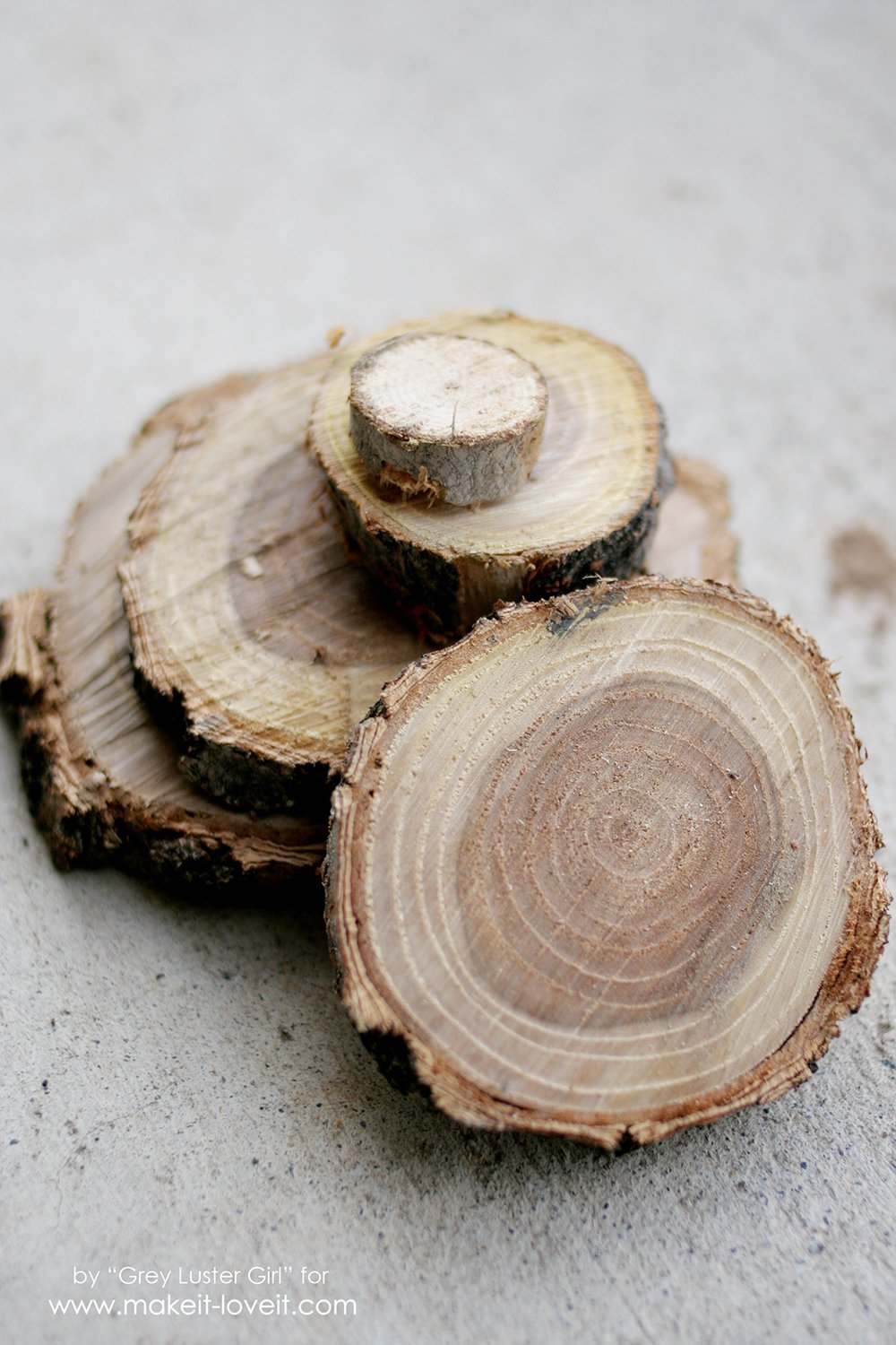 Make Your Own Wood Slice Backdrop (4)