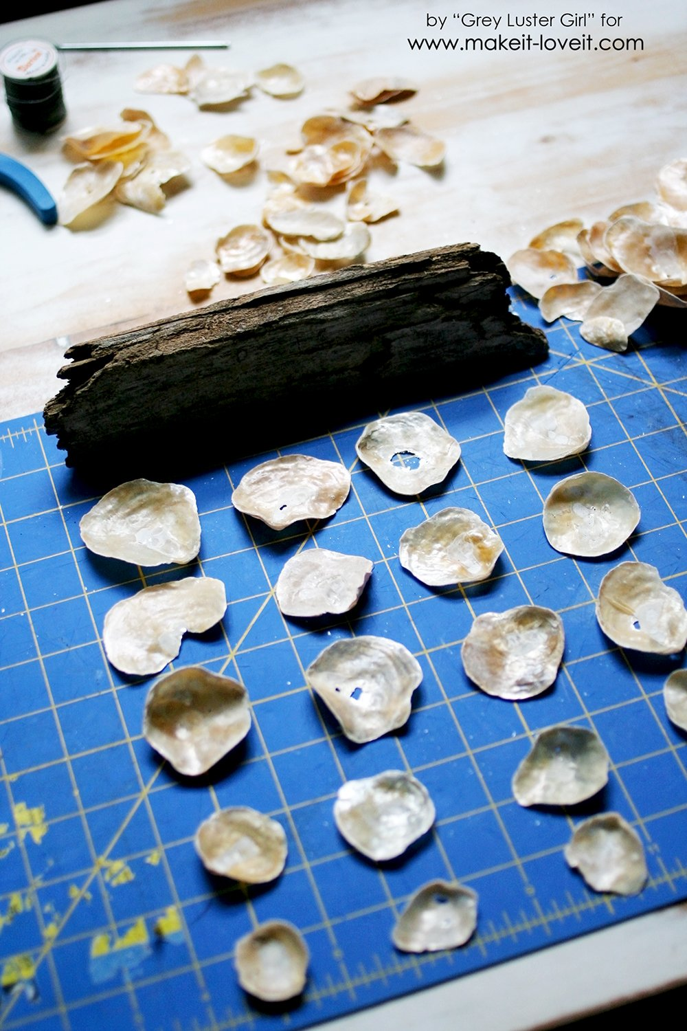 How to Make a Seashell Mobile (3)