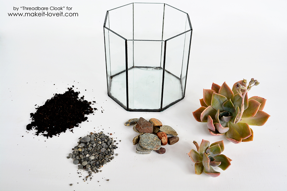 How To Make A Succulent Terrrarium