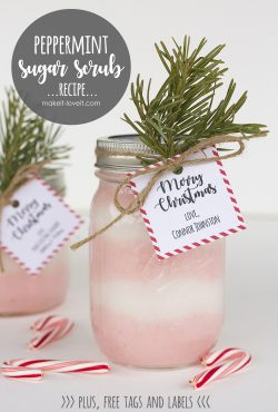 Peppermint Sugar Scrub Recipe (…with free label and tag)